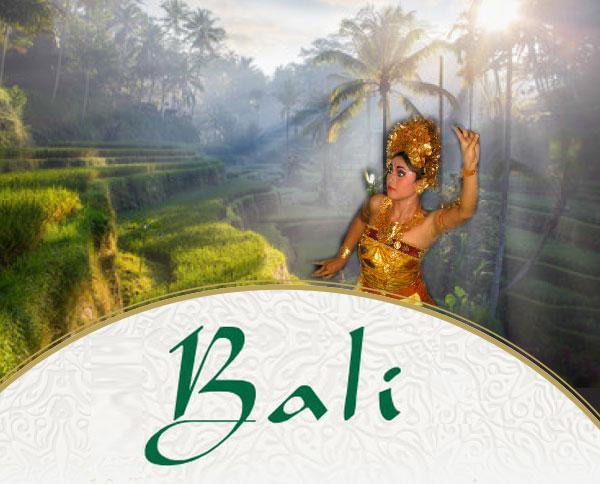 Seminare 2020 auf Bali mit Lex van Someren